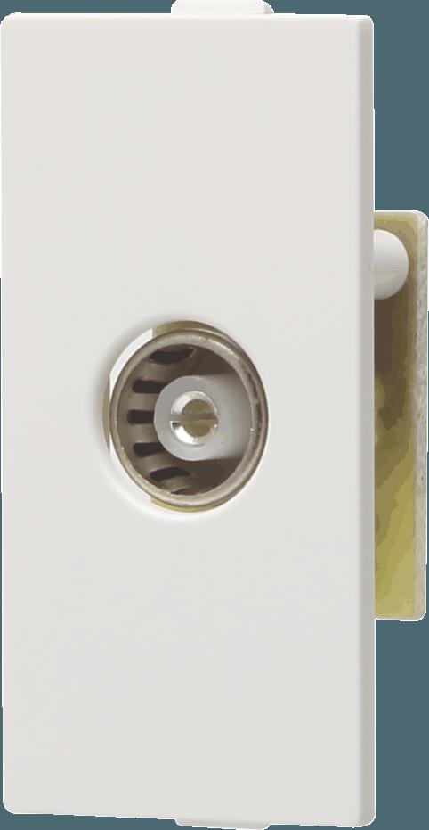 800032 c - TV Socket